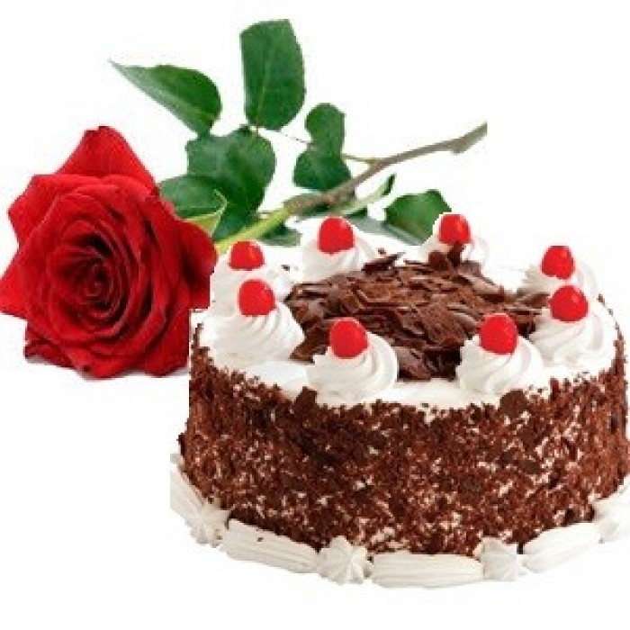 1 2 Kg Black Forest Cake With Single Red Rose